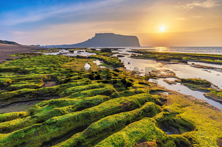 Jeju Island South Korea, Sunrise nature landscape at Jeju Do Seongsan Ilchulbong