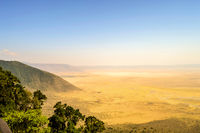 Elevated view of the ground of the Ngorongoro crater from the southern edge of the crater.