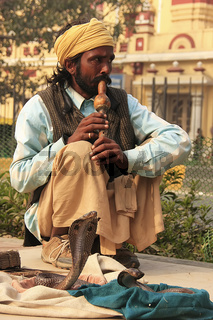 Snake charmer in the streets of New Delhi