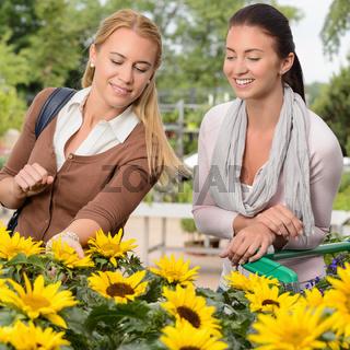 Two woman shopping for sunflowers garden center