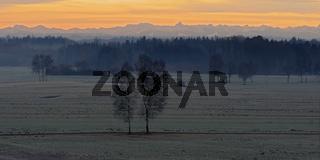 Riedlandschaft in der winterlichen Morgenröte