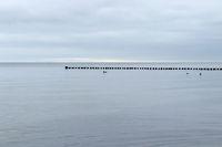 Landscape 007. Poel Island