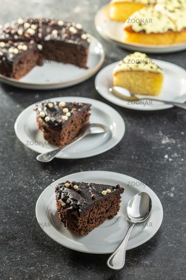 Piece of chocolate cake on dessert plate