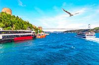 Ships in the Bosporus near the Sultan Fatih Mehmet Bridge and the Rumeli Hisar , Istanbul, Turkey