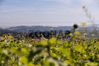 romantischer Ausblick im Oberen Donautal - Austria