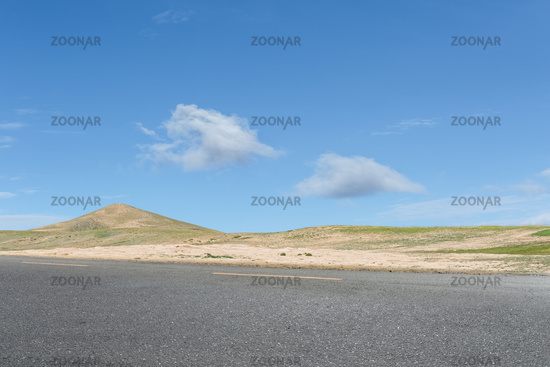 empty asphalt road on the wild