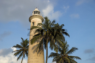 Lighthouse in Galle with palm trees, Sri Lanka