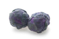 Purple Brussel Sprouts
