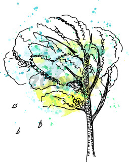 A vector, ink and watercolor drawing of an autumn tree in the wind on a white background
