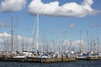 Sailing boats in the port of Maasholm on the Schlei