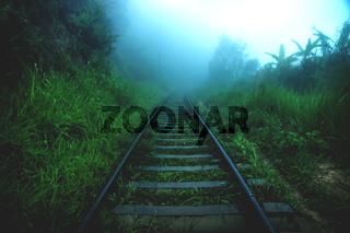 Dark wet railroad through foggy jungle forest, Ella Sri Lanka