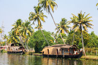 Houseboats on the Backwaters in Allepey