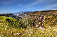Spring mountain plateau