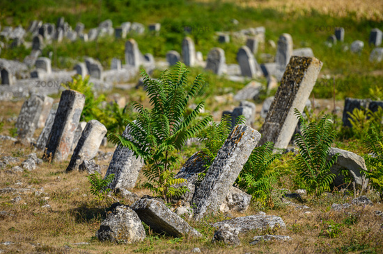 Old tombstones at the ancient Jewish cemetery in Vadul liu Rascov in Moldova