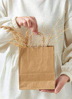 Woman's hand holding paper eco bag with dry natural plant twig.
