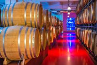 Wine Culture Center and Winery in Shabo, Ukraine