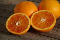 Citrus x sinensis Tarocco, Half-blood orange