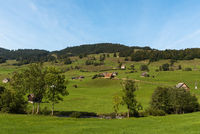 Landscape in Toggenburg with green pastures and farm houses, Canton of St. Gallen, Switzerland