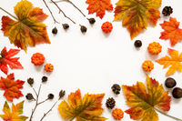 Bright Colorful Autumn Leaf Decoration, Copy Space