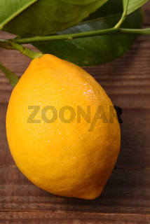 Closeup high angle shot of a single lemon with stem and leaves attached on a rustic wood table.