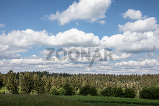 Rothaar Mountains with meadows and forests in summer