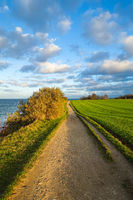 Steep coast near Niendorf, Luebeck Bay, Baltic Sea, Germany