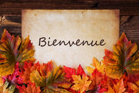 Grungy Old Paper, Colorful Leaves, Bienvenue Means Welcome