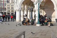 Venice Winter