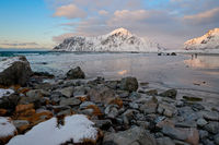 Lofoten Flakstad Beach in winter season