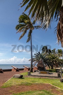 Old cannons and palm tree at the waterfront of Saint Denis on Reuinion island