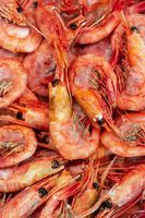 Group of boiled frozen wild shrimp with caviar cooked in sea water. Background of lot crustaceans