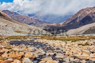 Mountain stream in Himalayas
