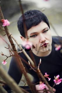 cherry trees III.jpg