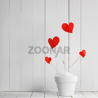 Heart haped flowers in white pot