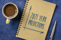2021 predictions text in notebook