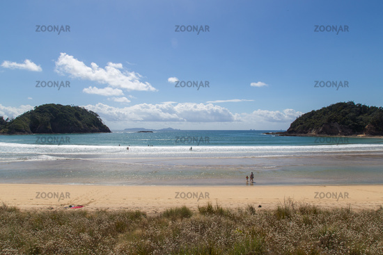 Whale Bay at the Tutukaka coast in New Zealand