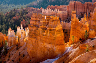 Bryce Canyon Sculpted by Nature