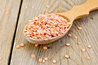 Lentils red in wooden spoon on board