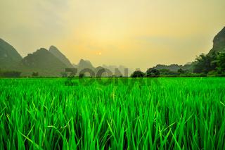 China landscape in Yangshuo Guilin