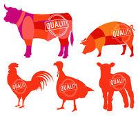 Farm animals symbols, collection, butcher shop, steak house. - vector illustration