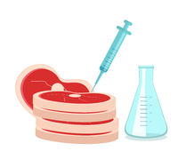 Synthetic meat is grown in the laboratory from stem cells. Artificial meat product, food technology of the future. Vector illustration
