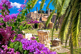 Ancient Rome Forum Romanum and Palatine hill scenic palm and flower view