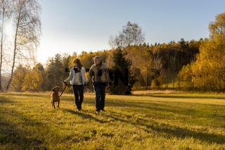 Couple walking dog autumn sunset landscape