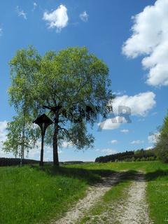 Wegkreuz auf der Schwaebischen Alb