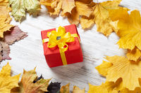Bright autumn composition with gift box