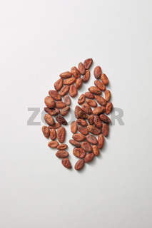 Cocoa fresh natural peas in the shape of coffee bean.