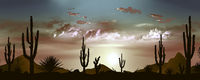Beautiful Mexican desert landscape in the evening