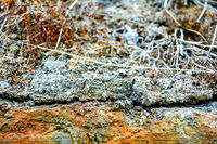 Old rusty concrete slab side view with soil layers and moss plantation