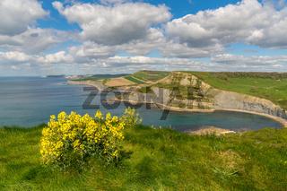 South West Coast Path near Emmett's Hill, Jurassic Coast, Dorset, UK