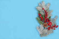 Festive Christmas card with a snow branch.